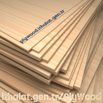 Brezilya Çam Plywood, Romanya Plywood, Rus Rusya Plywood Fiyatları, istanbul Plywood, ithal Plywood, Plywood Satışı, Uygun Fiyat Plywood, Uygun Plywood Fiyatları